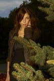 La fille derrière les branchements de sapin Image stock