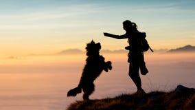 La fille donne la nourriture à son chien dans les montagnes Photo libre de droits