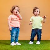 La fille drôle heureuse jumelle des soeurs jouant et riant Images stock