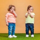 La fille drôle heureuse jumelle des soeurs jouant et riant Photos libres de droits