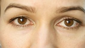 La fille en gros plan clignote ses yeux bruns banque de vidéos