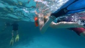 La fille et l'homme adultes nage lentement vers le récif coralien banque de vidéos