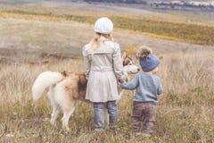 La fille et le garçon marchent avec le chien enroué Image stock