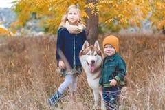 La fille et le garçon marchent avec le chien enroué Photographie stock