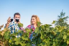 La fille et le type dans le vignoble Image stock