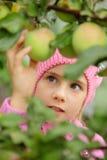 La fille et un pomme-arbre Photo libre de droits