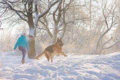 La fille forme son berger allemand de chien image stock