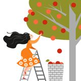La fille heureuse de bande dessinée sélectionne des pommes dans le jardin Temps de moisson Image symbolique de succès illustration de vecteur