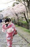 La fille japonaise dans la robe traditionnelle a appelé Kimono Image stock