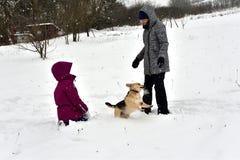 La fille joue avec le chien dans la neige et lui donne un baiser photos stock