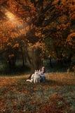 La fille joue avec son chien dans des feuilles d'automne tombées photo stock