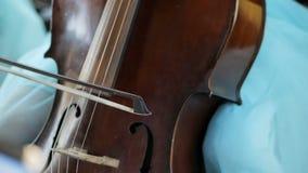 La fille joue le violoncelle à la célébration de mariage banque de vidéos