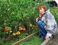 La fille mange la tomate mûre. Photographie stock libre de droits