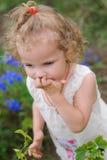 La fille mange une baie du buisson Images libres de droits