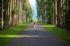 La fille marchant loin Photographie stock libre de droits
