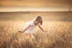 La fille marche dans le domaine avec du seigle au coucher du soleil, mode de vie Photos stock