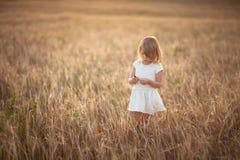 La fille marche dans le domaine avec du seigle au coucher du soleil, mode de vie Image libre de droits