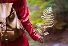 La fille marche dans les bois avec des feuilles d'automne à disposition Photographie stock libre de droits