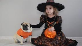 La fille mignonne et son petit chien sont habillés dans les costumes pour Halloween L'enfant dans une image de sorcier s'assied s clips vidéos