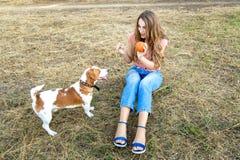 La fille mignonne joue avec son chien en parc Photographie stock