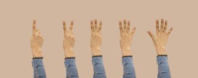 La fille mignonne montrant un à cinq doigts comptent des signes d'isolement sur le fond avec le chemin de coupure a inclus Gestes images stock