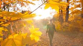 La fille mince est sur le chemin d'automne dans la forêt que les beaux rayons lumineux du soleil brillent dans la lentille Mouvem banque de vidéos