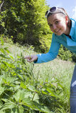 La fille montre des feuilles d'ortie cuisante Image libre de droits