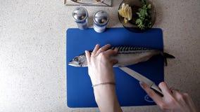 La fille nettoie les poissons sur la table dans sa cuisine Dîner, faisant cuire clips vidéos