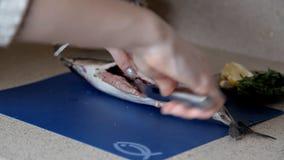 La fille nettoie les poissons sur la table dans sa cuisine Dîner, faisant cuire banque de vidéos