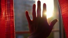 La fille ouvre les rideaux rouges et jouee avec ses mains par les rayons du ` s du soleil Plan rapproché de main banque de vidéos