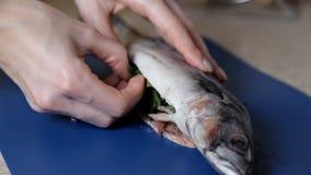 La fille prépare les poissons bourrés pour le dîner banque de vidéos