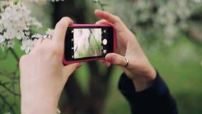 La fille prend des photos des fleurs utilisant un smartphone avec l'encadrement différent banque de vidéos