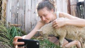 La fille prend un selfie avec un mouton dans un stylo de ferme pendant l'été, l'agneau mâche l'herbe banque de vidéos