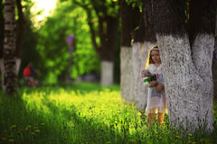 La fille rassemble des fleurs Photographie stock