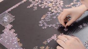 La fille rassemble des puzzles sur la table banque de vidéos
