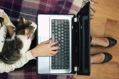 La fille regarde avec un film de chat sur un ordinateur portable Image libre de droits