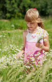 La fille reste dans l'herbe verte photos stock