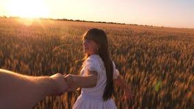 La fille riante court à travers le champ avec du blé tenant une main du ` s d'homme dans l'éclat du soleil d'or Mouvement lent banque de vidéos