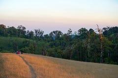 La fille s'asseyent sur la montagne Images libres de droits