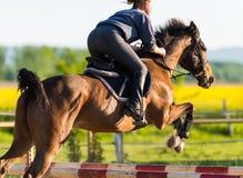 La fille sautant avec le cheval image stock