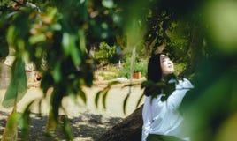 La fille se penche sur le tronc d'arbre, souriant Photographie stock libre de droits