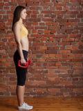 La fille se prépare aux exercices avec des haltères Image libre de droits