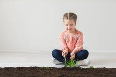 La fille tâte avec la terre et plante une usine Images libres de droits