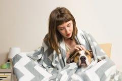 La fille tapote son chien de terrier du Staffordshire dans la couverture de jet Photo libre de droits