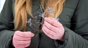 La fille tient dans des ses mains une branche sèche couverte de frost_ photographie stock libre de droits