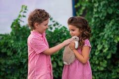 La fille tient un petit lapin mignon, pousse extérieure photos stock