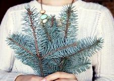La fille tient une branche de sapin Image stock