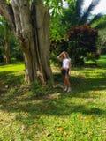 La fille touche un grand arbre en parc Jamaïque photographie stock