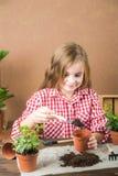 La fille transplante un pot avec une fleur La fille dans une chemise de plaid dans les mains de la terre avec le lierre de bruyèr image stock