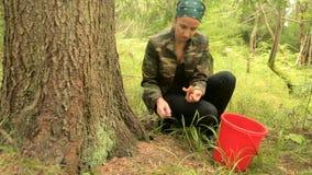 La fille a trouvé un champignon dans la forêt banque de vidéos